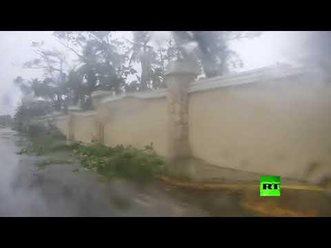 العرب اليوم - شاهد إعصار ماريا يقلع الأشجار من جذورها