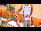 Arab Today, arab today hong kong turns dragon boat festival into citywide racing carnival