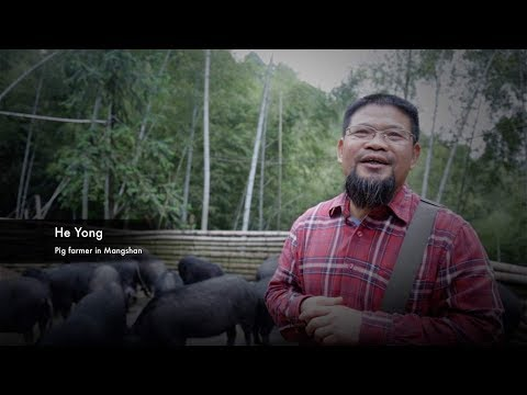 Arab Today, arab today a hero of chinese agricultural reform