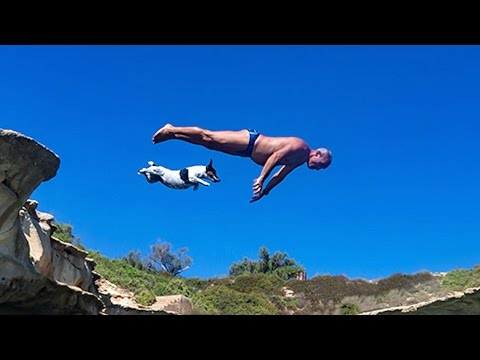Arab Today, arab today pet jack russell 'titti' jumps from rocks with her owner