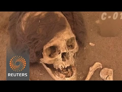 Arab Today, arab today chile seeks help to protect mummies