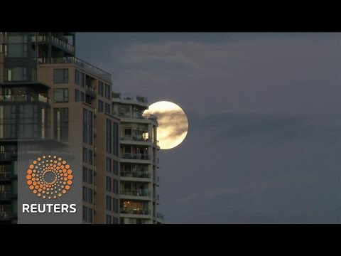 Arab Today, arab today supermoon appears in australia