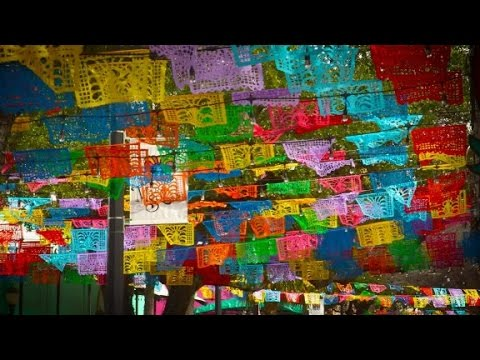 discover alamo city