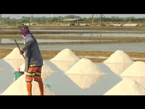 Arab Today, arab today falling salt prices threaten traditional life