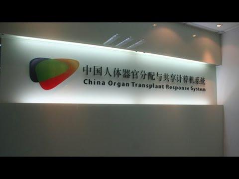 Arab Today, arab today ensures fair distribution of donated organs