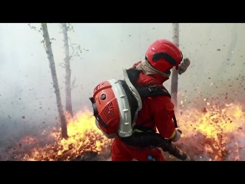 Arab Today, arab today dramatic footage of firefighters battle huge forest fire