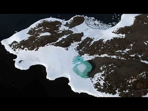 Arab Today, arab today turning antarctica green but why