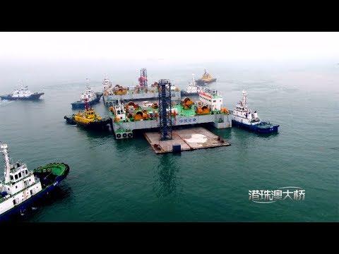 Arab Today, arab today episode 2 of hong kongzhuhaimacao bridge