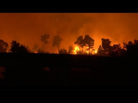 Arab Today, arab today greece wildfires paradise becomes hell