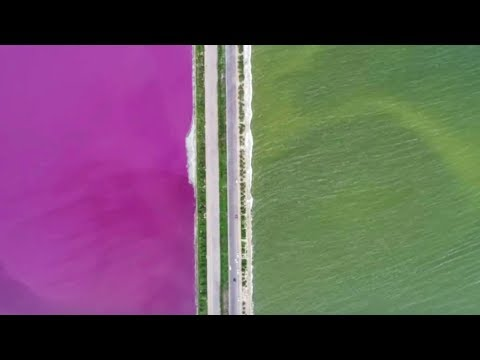 Arab Today, arab today chinas green and pink colored lake