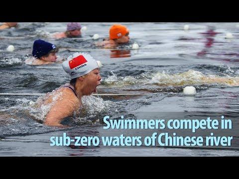 swimmers compete in subzero waters