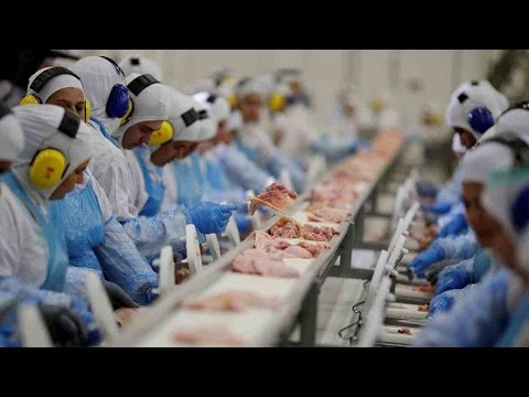 Arab Today, arab today over brazilian rotten meat scandal