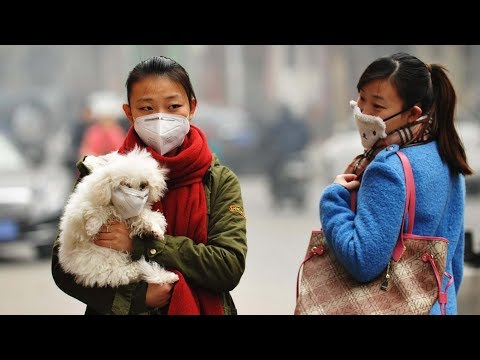 severe air pollution alerts issued for wide area