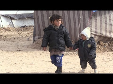 displaced syrians survive war but face battle