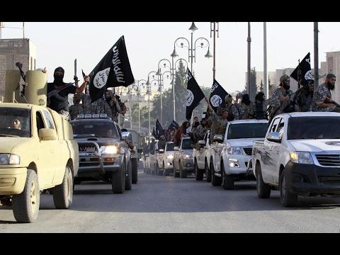 العرب اليوم - شاهد مرصد الإفتاء يُحذِّر من نزوح داعش إلى دول المغرب العربي