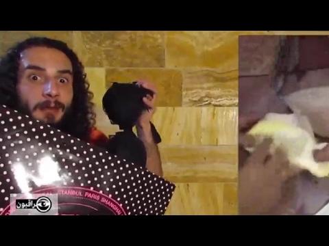 العرب اليوم - بالفيديوسلاح السخرية من أصحاب نظرية المؤامرة في العالم العربي
