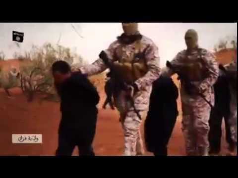 العرب اليوم - بالفيديو: تنظيم
