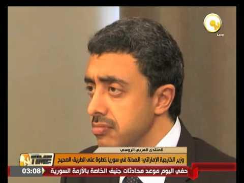 وزير الخارجية الإماراتي يؤكد أن  الهدنة في سورية خطوة على الطريق الصحيح