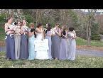 العرب اليوم - بالفيديو الكلاب بدلًا من باقات الورد إلى العرائس