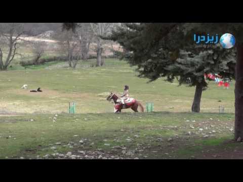 العرب اليوم - شاهد مناظر رائعة من مدينة إفران