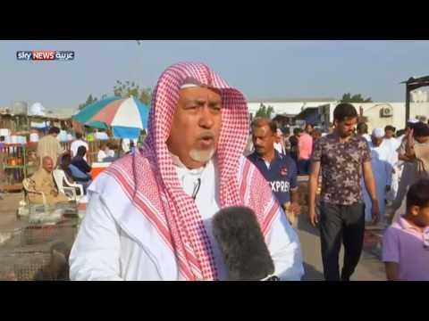 العرب اليوم - شاهد سوق الطيور مقصد أهل جدة كل جمعة