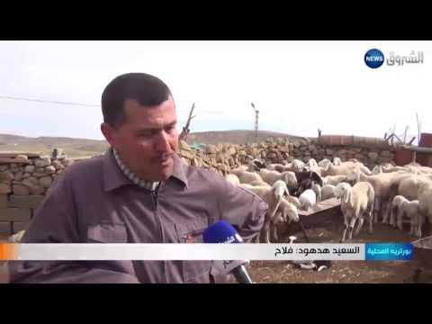 العرب اليوم - السعيد هدهود وفاء للإذاعة فاق 10 أعوام