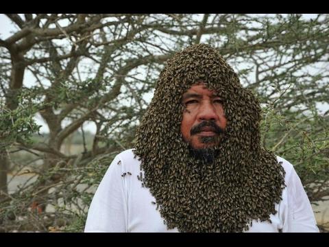 العرب اليوم - رجل يجمع أكثر من 20 ألف نحلة حول وجهه