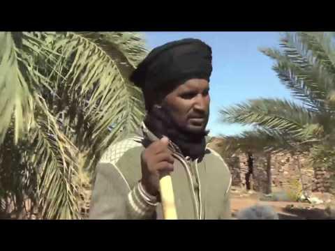 العرب اليوم - بالفيديو  جولة في منطقة أدرار شمال موريتانيا