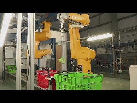 العرب اليوم - بالفيديو النظم الآلية تجتاح الشركات الأوروبية