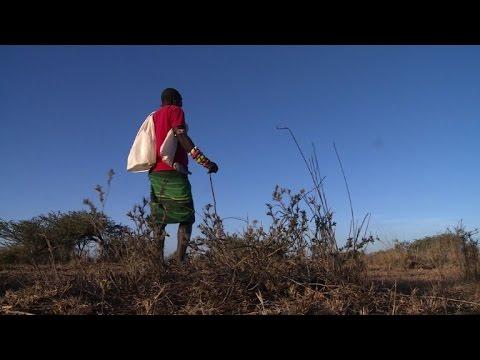العرب اليوم - شاهد  صراع على الأرض في المرتفعات الكينية