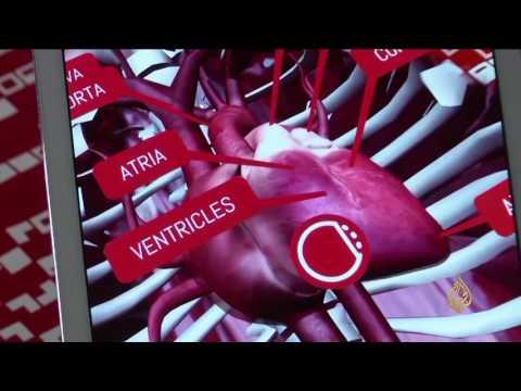 العرب اليوم - بالفيديو تطبيق تعليمي يساعد الطلاب في فهم مادة الأحياء