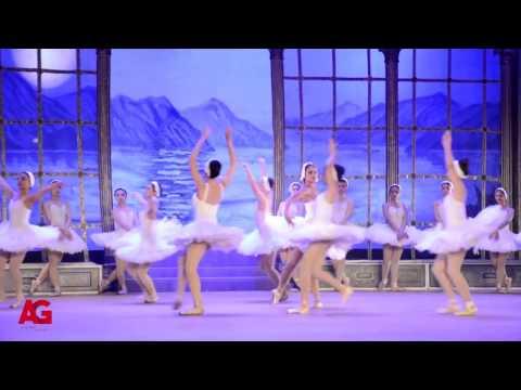 العرب اليوم - شاهد نيللي كريم أثناء أدائها لرقصة الباليه