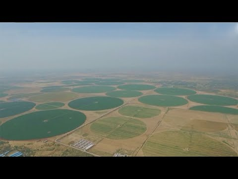 العرب اليوم - شاهد الصين تكافح التصحر بـالدوائر الخضراء العملاقة