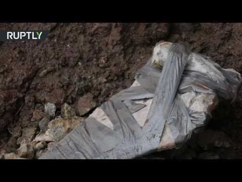 العرب اليوم - شاهد العثور على بقايا عظان ديناصور كبير