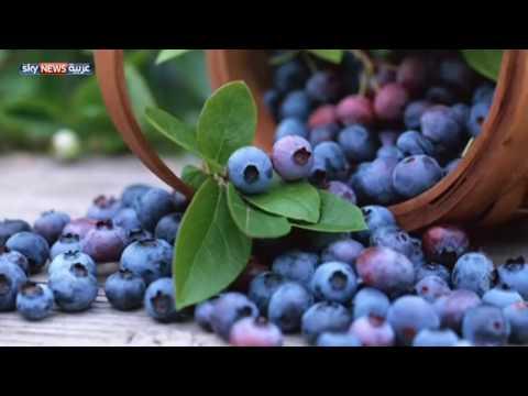 العرب اليوم - بالفيديو تعرف على فوائد الأطعمة البنفسجية