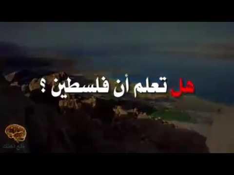 العرب اليوم - بالفيديو  معلومات خطيرة عن فلسطين لم تسمع عنها من قبل