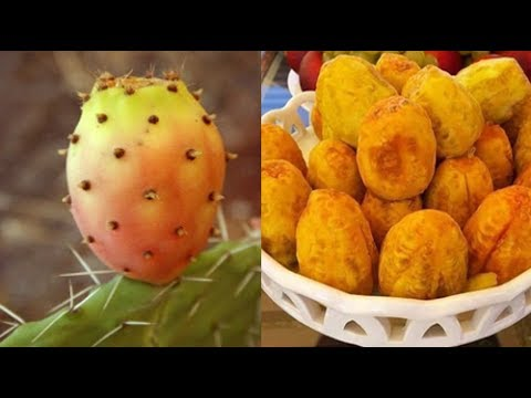العرب اليوم - بالفيديو شاهد ماذا يحدث لجسمك إذا أكلت التين الشوكي