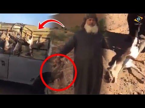 العرب اليوم - مجموعة من الرجال يرتكبون جريمة في طانطان