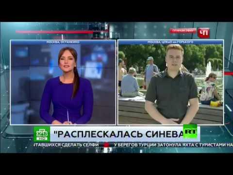 العرب اليوم - بالفيديو لكمة قوية لمراسل قناة روسية على الهواء مباشرة