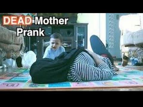العرب اليوم - شاهد ردود فعل الأطفال الرضع عند موت والدتهم