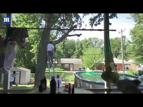 العرب اليوم - شاهد رجل يتعرض لموقف محرج عند قطع فرع شجرة