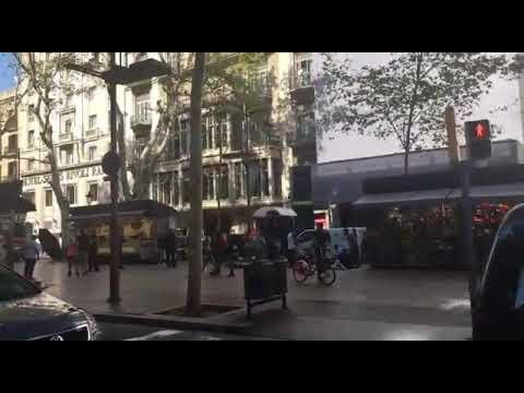 العرب اليوم - شاهد 13 قتيلًا وعشرات الجرحى في عملية دهس مروّعة في برشلونة