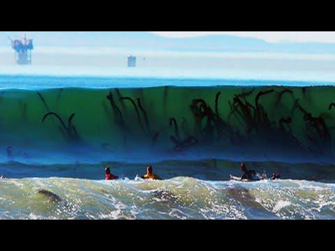 العرب اليوم - شاهد أخطر 8 شواطئ في العالم