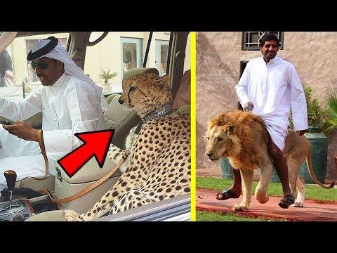 العرب اليوم - شاهد  10 أشياء مدهشة لن تراها إلا في دبي