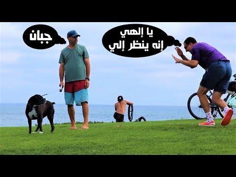 العرب اليوم - شاهد شاهد رد فعل الفتيات علي مقلب الكلب المسكين