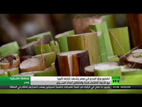 العرب اليوم - شاهد صناعة ورق البردي في خطر في مصر