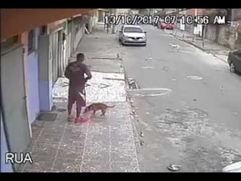 العرب اليوم - رد فعل رجل قضى كلب حاجته عليه