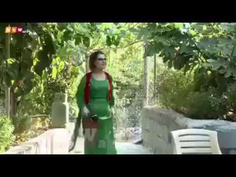 العرب اليوم - لحظة سقوط مذيعة داخل حوض مياه