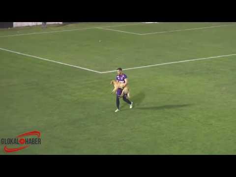 شاهد كلب يقتحم مباراة في الأرجنتين ويعرقل أحد اللاعبين