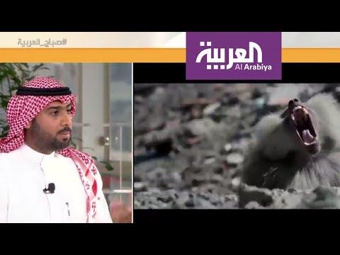 جود فيلم يحكي قصة كفاح السعوديين